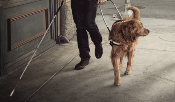 Publicis/Belgian Guide Dog Federation: