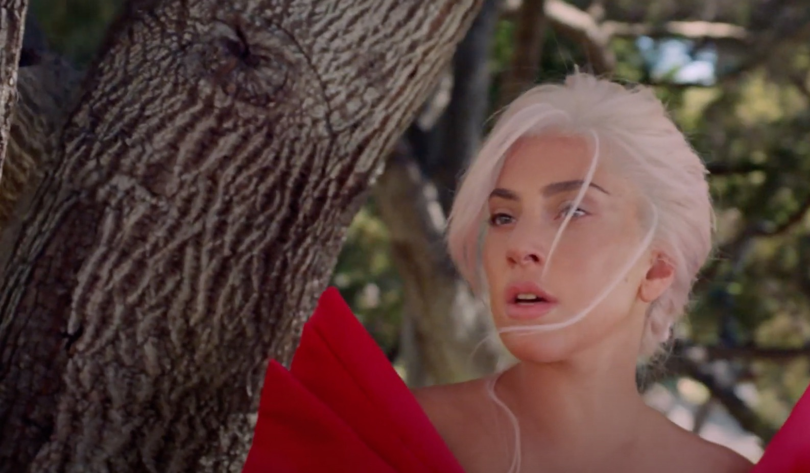L'Oréal officialise l'union entre Lady Gaga et Valentino